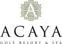 Image of ACAYA Company Logo
