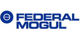 Image of Federal Mogul Corporation and Federal Mogul Limited Company Logo