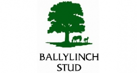 Image of Ballylinch Stud Company Logo