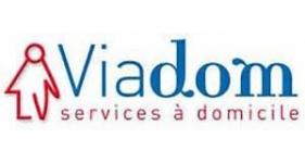 Image of Viadom Company Logo