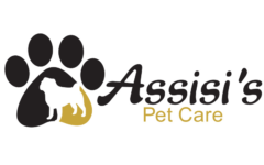 Image of Assisi Pet Care Ltd Company Logo