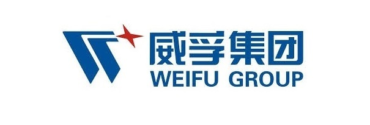 Image of Weifu Group Company Logo