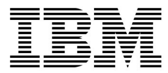 Image of IBM Global Business Services Company Logo