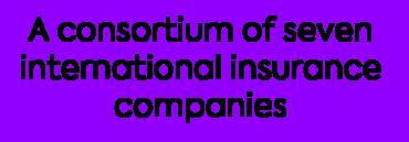 Image of a consortium of seven international insurance companies Company Logo